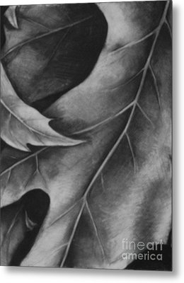 Leaf The Final Stage Metal Print by Jamey Balester