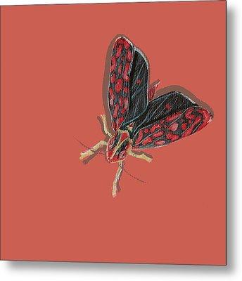 Leafhopper Metal Print