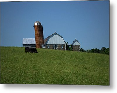 Metal Print featuring the photograph Lean Beef by Robert Geary