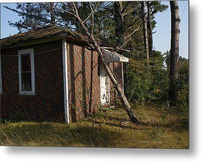 Metal Print featuring the photograph Lean On Me. by Ron Read