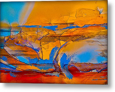 Leap Into The Sky Metal Print by David Clanton