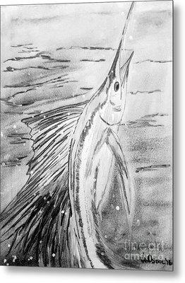 Leaping Sailfish - Black And White Metal Print by Scott D Van Osdol