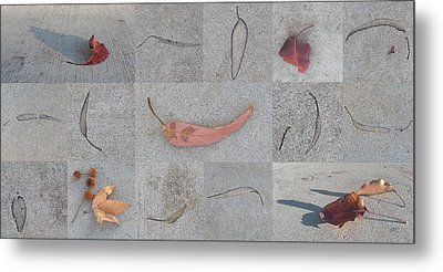 Metal Print featuring the photograph Leaves And Cracks Collage by Ben and Raisa Gertsberg