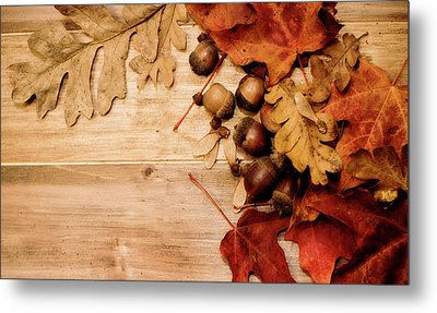 Metal Print featuring the photograph Leaves And Nuts 1 by Rebecca Cozart