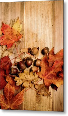 Metal Print featuring the photograph Leaves And Nuts 2 by Rebecca Cozart