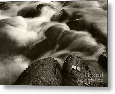 Leaves And Waterfall Metal Print by Timothy Johnson