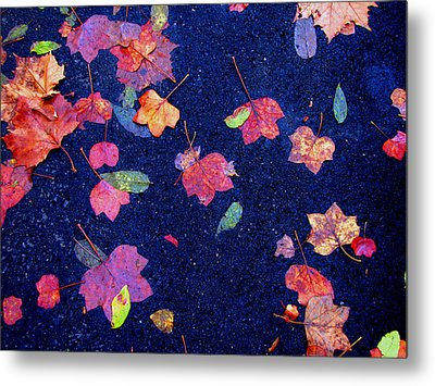 Leaves Metal Print by Christopher Woods