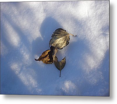 Leaves On Snow Metal Print
