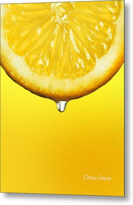 Lemon Drop Metal Print by Mark Rogan