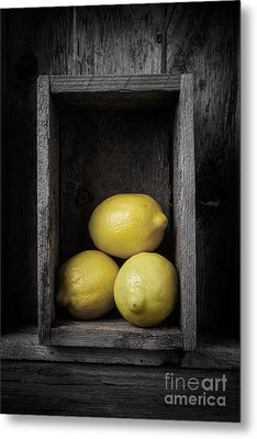 Lemons Still Life Metal Print by Edward Fielding
