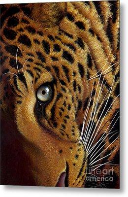 Leopard Metal Print by Jurek Zamoyski