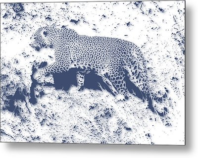 Leopard5 Metal Print by Joe Hamilton