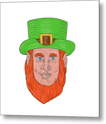Leprechaun Head Front Drawing Metal Print by Aloysius Patrimonio