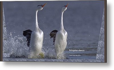 Let Humans Learn From The Nature  Foreplay Dance It Pleases Everyone Metal Print