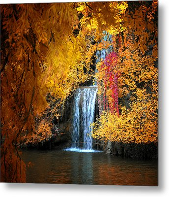 Metal Print featuring the photograph Let It Flow by Philippe Sainte-Laudy