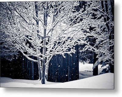 Let It Snow Metal Print by Maggie Terlecki