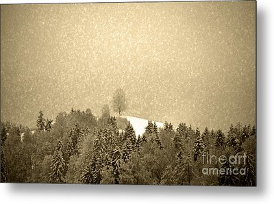 Metal Print featuring the photograph Let It Snow - Winter In Switzerland by Susanne Van Hulst