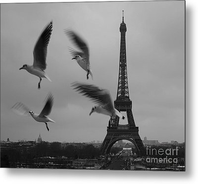 Metal Print featuring the photograph Let Your Spirit Fly  by Danica Radman