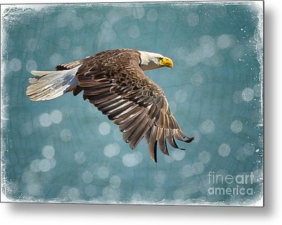 Liberty Metal Print by Alice Cahill