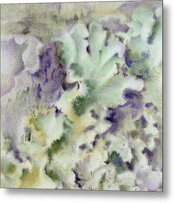 Lichen Metal Print by Mindy Lighthipe