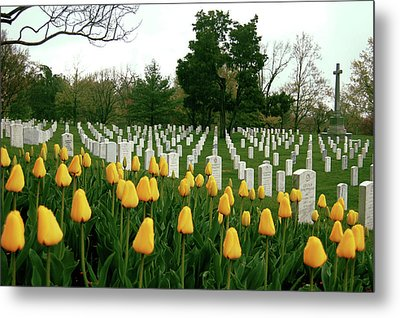 Life And Death At Arlington Metal Print