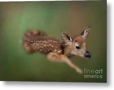 Metal Print featuring the photograph Life Begins by Brenda Bostic