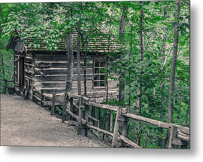 Metal Print featuring the photograph Life In The Ozarks by Annette Hugen