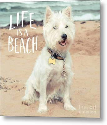 Life Is A Beach Dog Square Metal Print by Edward Fielding