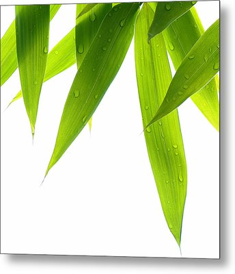 Life Is Green Metal Print