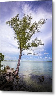 Life On The Edge Metal Print by Marvin Spates
