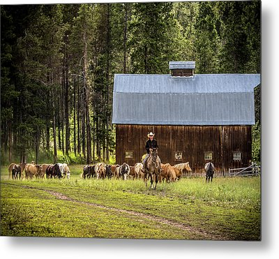 Metal Print featuring the photograph Lifestyle by Mary Hone