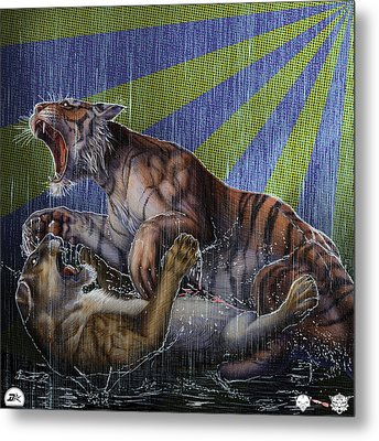 Liger  Release Metal Print by David Starr