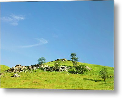 Metal Print featuring the photograph Light And Shadows - Spring In Central California by Ram Vasudev