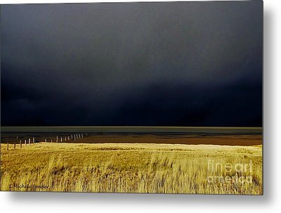 Light Before The Storm Metal Print by Michele Penner
