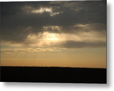 Light Metal Print by Cheryl Helms