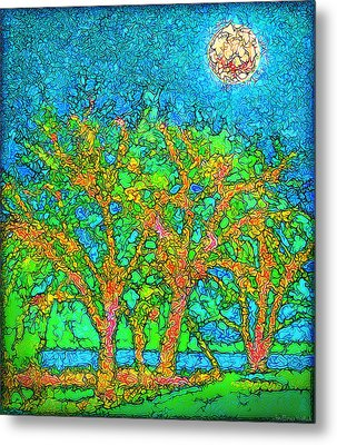Metal Print featuring the digital art Light Of The Radiant Sun - Trees In Boulder County Colorado by Joel Bruce Wallach