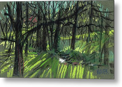 Light Through The Trees Metal Print by Donald Maier