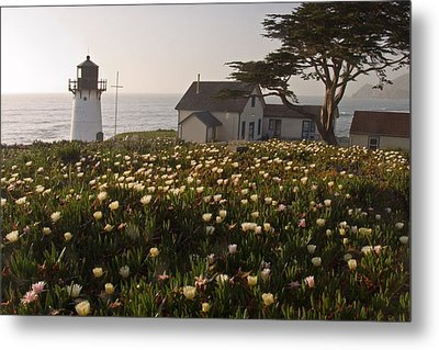 Lighthouse With A Blanket Of Wildflowers Metal Print by George Oze