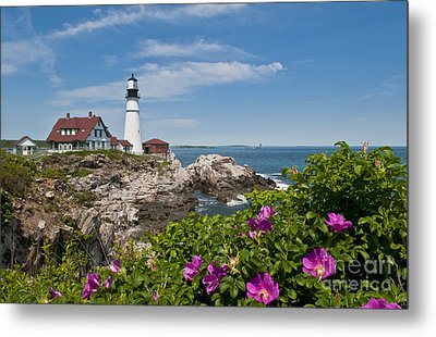 Lighthouse With Rocks On Shore Metal Print by Bill Bachmann and Photo Researchers