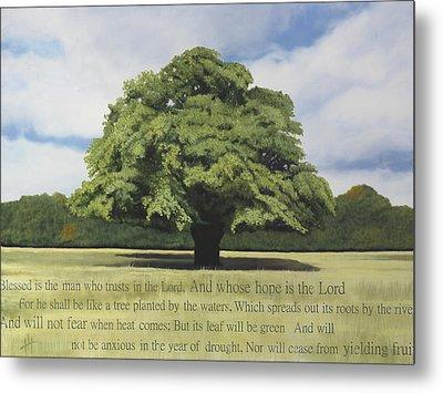 Like A Tree Metal Print by Hannah Harris