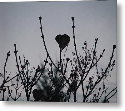Metal Print featuring the photograph Lilac Heart by Judyann Matthews
