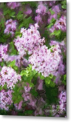 Lilac Lovelies Metal Print by A New Focus Photography