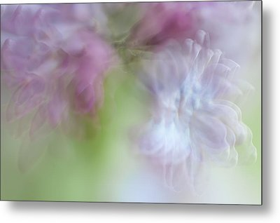 Lilac. Spring Vibrations Metal Print by Jenny Rainbow