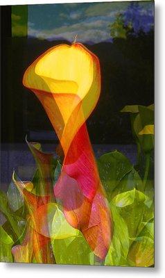 Lilies Metal Print by Eileen Shahbazian