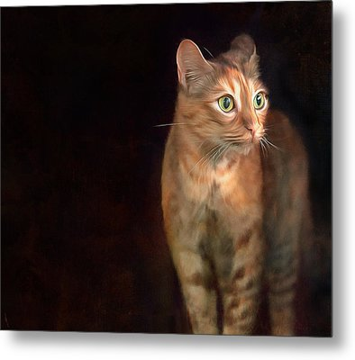 Lilly Standing At The Door Metal Print by Hazel Billingsley