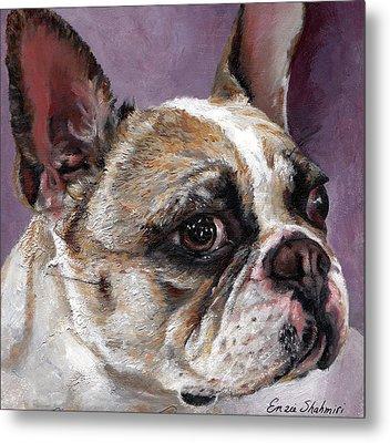 Lilly The French Bulldog Metal Print by Enzie Shahmiri