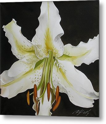 lily in White Metal Print by Alfred Ng