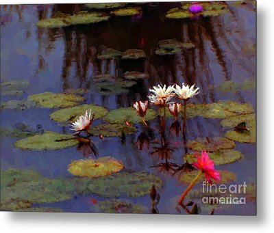 Lily Pond Watercolor Metal Print by Fred Jinkins