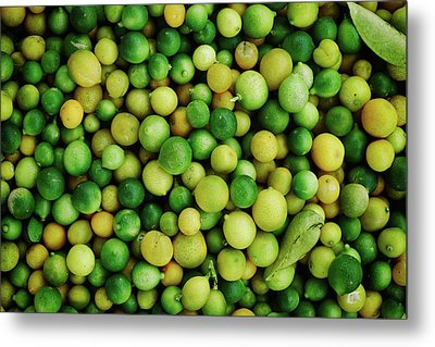 Limes Metal Print by Happy Home Artistry