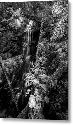 Limited And Restricted Metal Print by Jon Glaser
